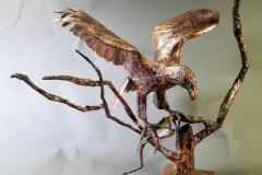 new-eagle-1